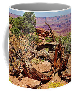Coffee Mug featuring the photograph Canyonlands 2 by Dany Lison