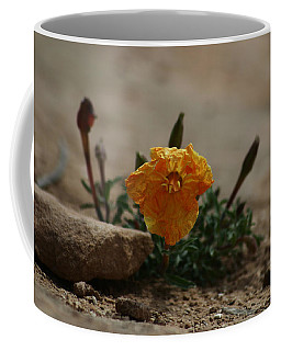 Canyonlands National Park Coffee Mug