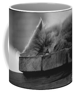 Cape Cod Cat Coffee Mug