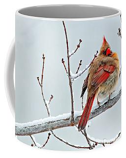 Cardinal I The Snow  Coffee Mug