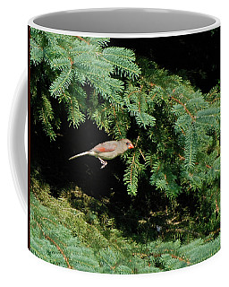 Coffee Mug featuring the photograph Cardinal Just A Hop Away by Thomas Woolworth