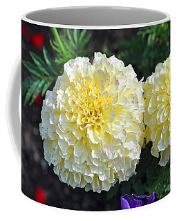 Coffee Mug featuring the photograph Carnations by Tikvah's Hope