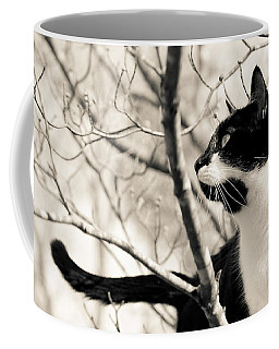 Cat In A Tree In Black And White Coffee Mug