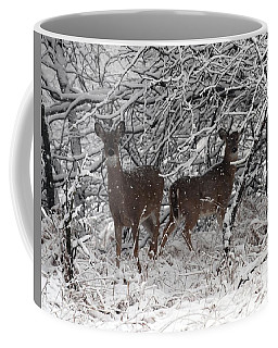 Coffee Mug featuring the photograph Caught In The Snow Storm by Elizabeth Winter