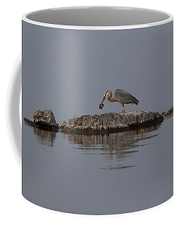 Coffee Mug featuring the photograph Caught One by Eunice Gibb
