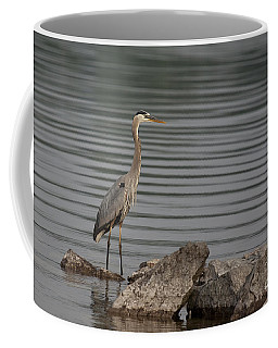 Coffee Mug featuring the photograph Cautious by Eunice Gibb