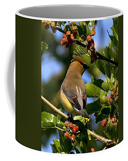 Coffee Mug featuring the photograph Cedar Waxwing Dsb056 by Gerry Gantt