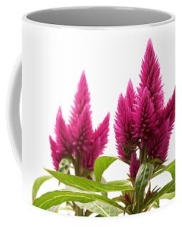 Celosia Argentea Coffee Mug