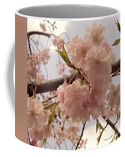 Coffee Mug featuring the photograph Cherry Blossom 2 by Andrea Anderegg