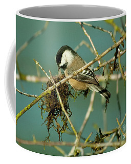 Chick-a-dee Coffee Mug