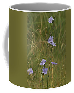 Chicory 2765 Coffee Mug