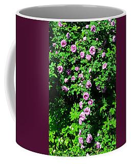 China Rose Coffee Mug