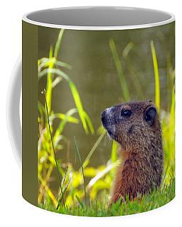Chucky Woodchuck Coffee Mug