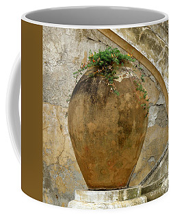 Coffee Mug featuring the photograph Clay Pot by Lainie Wrightson