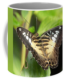Coffee Mug featuring the photograph Clipper Butterfly by Lynn Bolt