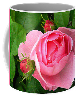 Rose And Rose Buds Coffee Mug
