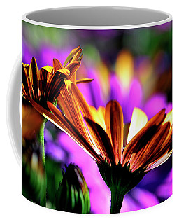 Color And Light Coffee Mug