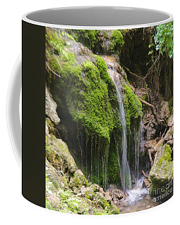 Coffee Mug featuring the photograph Colorado 2 by Deniece Platt