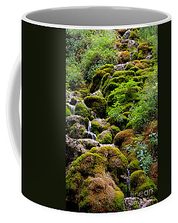Coffee Mug featuring the photograph Colorado 3 by Deniece Platt