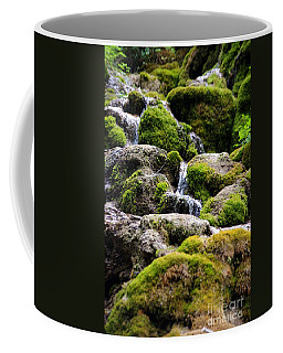Coffee Mug featuring the photograph Colorado 5 by Deniece Platt