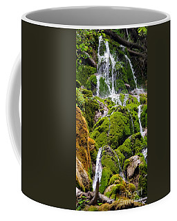 Coffee Mug featuring the photograph Colorado 6 by Deniece Platt