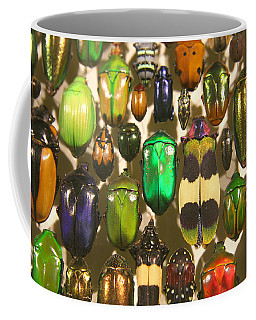Coffee Mug featuring the photograph Colorful Insects by Brooke T Ryan