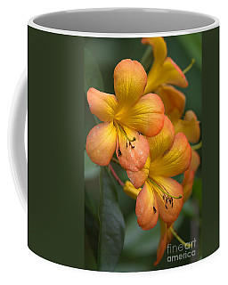 Colors Of The Sunset Sky Coffee Mug by Anne Rodkin
