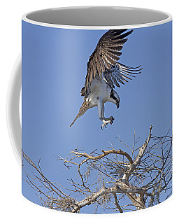 Coming In For A Landing Coffee Mug by Anne Rodkin