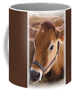 Contentment Coffee Mug