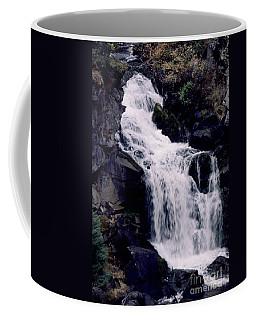 Cool Clear Waters Coffee Mug by Sharon Elliott