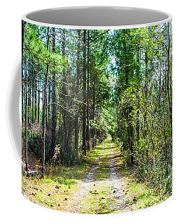 Coffee Mug featuring the photograph Country Path by Shannon Harrington