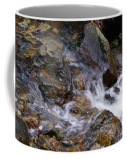 Creek Scene On Mt Tamalpais Coffee Mug