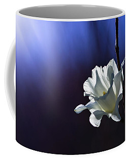 Daffodil Coffee Mugs