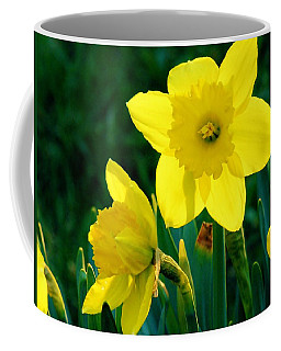 Coffee Mug featuring the photograph Daffodils by Sherman Perry