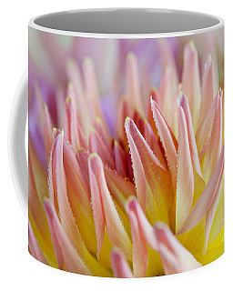 Dahlia Flower 05 Coffee Mug