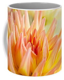 Dahlia Flower 06 Coffee Mug