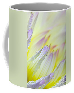 Dahlia Flower 07 Coffee Mug