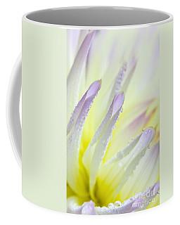 Dahlia Flower 11 Coffee Mug