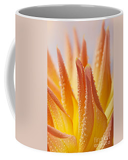 Dahlia Flower 14 Coffee Mug