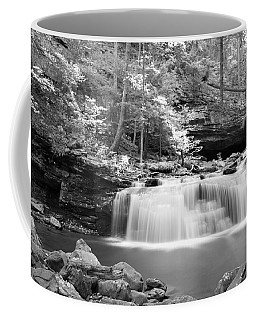 Dainty Waterfall Coffee Mug