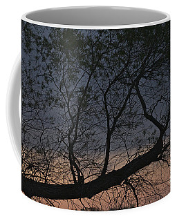 Coffee Mug featuring the photograph Dawn by William Norton