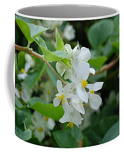 Coffee Mug featuring the photograph Delicate White Flower by Jennifer Ancker