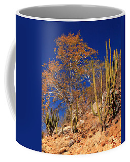 Desert Colors Coffee Mug