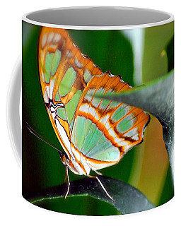 Coffee Mug featuring the photograph Dido Longwing Butterfly by Peggy Franz