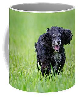 Dog Running On The Green Field Coffee Mug