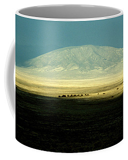 Dome Mountain Coffee Mug by Brent L Ander
