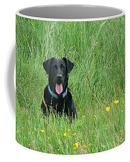 Coffee Mug featuring the photograph Dot by Pamela Patch
