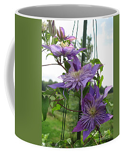 Coffee Mug featuring the photograph Double Clematis Named Crystal Fountain by J McCombie