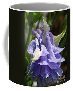 Coffee Mug featuring the photograph Double Columbine Named Light Blue by J McCombie