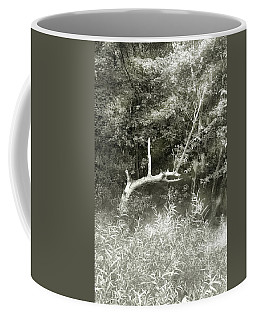 Coffee Mug featuring the photograph Dragon Bones by Mary Almond